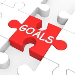 My professional goals essay
